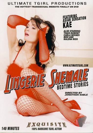 Lingerie Shemale Bedtime Stories (2008)