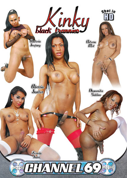Kinky Black Trannies (2013)