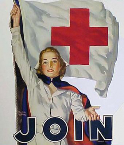 the american red cross as a business organization