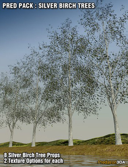 Pred Pack Silver Birch Trees