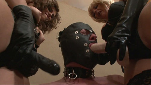 Extreme Therapy Female Domination