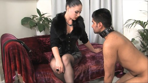 Serve and Worship Female Domination