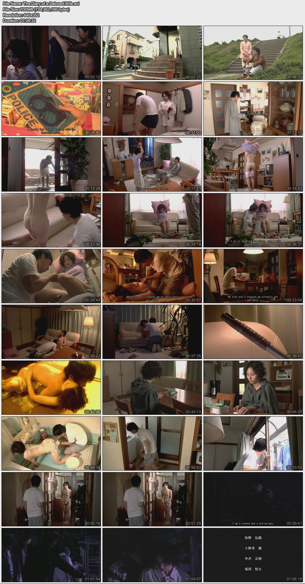 6 The Diary of Beloved Wife [18+]