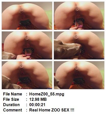File Name HomeZ00_53